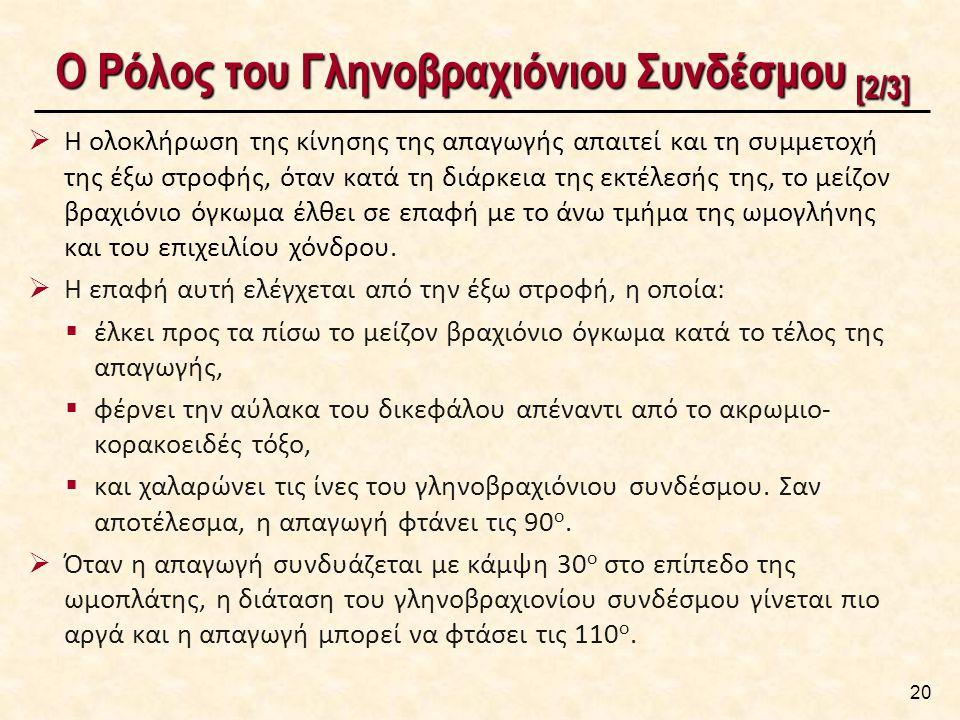 Ο Ρόλος του Γληνοβραχιόνιου Συνδέσμου [3/3]